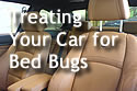 Text 'Treating Your Car for Bed Bugs,' with a car interior in the background